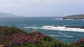 Spiaggia co Kerry di Derrynane Immagini Stock Libere da Diritti