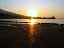 Spiaggia con alba di tramonto del sole e dell'uccello Fotografia Stock