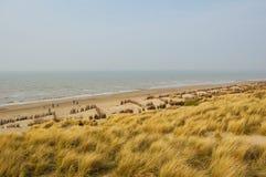 Spiaggia con erba Immagini Stock Libere da Diritti