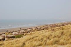 Spiaggia con erba Fotografie Stock