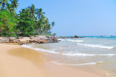 Spiaggia con gli alberi del cocco Fotografia Stock Libera da Diritti