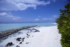 Spiaggia con i cieli blu Fotografia Stock