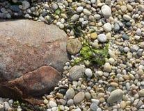 Spiaggia con i grandi massi della roccia Immagini Stock