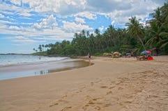 Spiaggia con la donna del surfista Fotografia Stock