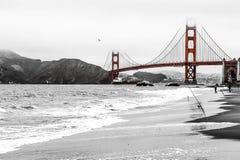 Spiaggia con la vista di Golden Gate Immagini Stock Libere da Diritti