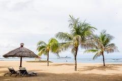 Spiaggia con le palme in Bali Immagini Stock Libere da Diritti