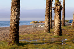 Spiaggia Costa del Sol (costa del Sun), Malaga in Andalusia, Spagna Immagini Stock