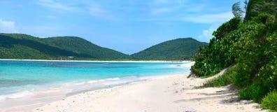 Spiaggia Culebra di flamenco Immagine Stock