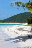 Spiaggia Culebra di flamenco Fotografia Stock