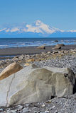 Spiaggia d'Alasca Immagine Stock Libera da Diritti