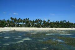 Spiaggia dal mare Fotografie Stock
