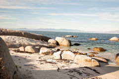 Spiaggia dei massi, Città del Capo Fotografia Stock Libera da Diritti