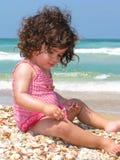 Spiaggia dei seashells Fotografia Stock Libera da Diritti