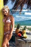 Spiaggia del bikini bionda Immagini Stock