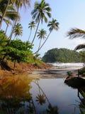 Spiaggia del Brasile Immagini Stock Libere da Diritti