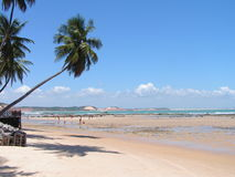 Spiaggia del Brasile Fotografia Stock Libera da Diritti