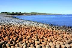 Spiaggia del ciottolo, Irlanda Fotografia Stock Libera da Diritti