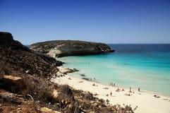 Spiaggia del coniglio Immagine Stock Libera da Diritti
