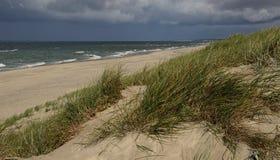 Spiaggia del deserto di autunno sulla banca del Mar Baltico vicino allo sputo di Curonian (Russia) Fotografia Stock
