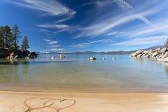 Spiaggia del Lake Tahoe con i cervi maschi Fotografia Stock Libera da Diritti