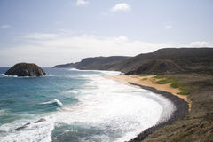 Spiaggia del leone fotografia stock