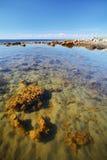 Spiaggia del mar Bianco sull'isola di Solovetsky Fotografia Stock