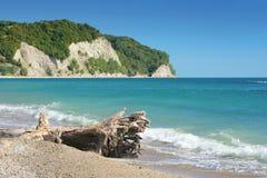 Spiaggia del Mar Nero Fotografie Stock