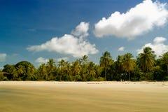 Spiaggia del Maracaju, natale Fotografie Stock