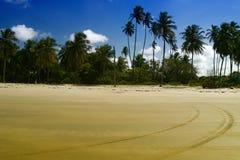 Spiaggia del Maracaju, natale Immagini Stock