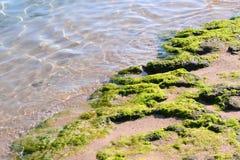 Spiaggia del mare Fotografie Stock Libere da Diritti
