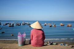 Spiaggia del Ne di Mui Immagine Stock