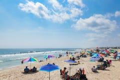 Spiaggia del New Jersey del boschetto dell'oceano Immagine Stock Libera da Diritti