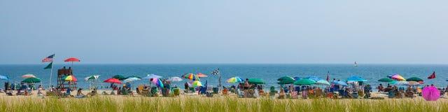 Spiaggia del New Jersey del boschetto dell'oceano Immagine Stock