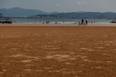 Spiaggia del paesaggio Immagine Stock