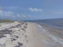 Spiaggia del Panama Fotografie Stock Libere da Diritti