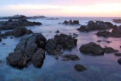 Spiaggia del parco di stato di Asilomar, vicino a Monterey, California, U.S.A. Fotografia Stock