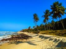 Spiaggia del Pipa nel Brasile Fotografia Stock Libera da Diritti