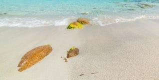 Spiaggia del Principe foreshore. Costa Smeralda Stock Image
