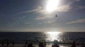Spiaggia del Puerto Vallarta immagine stock libera da diritti