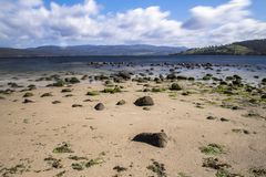 Spiaggia del punto di Dennes situata sull'isola di Bruny in Tasmania fotografia stock libera da diritti