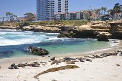 Spiaggia del raggruppamento dei bambini Immagine Stock Libera da Diritti