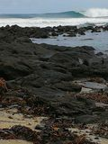 Spiaggia del sud Immagini Stock Libere da Diritti