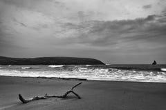 Spiaggia del sud Pembrokeshire Galles Regno Unito del vasto porto fotografie stock libere da diritti