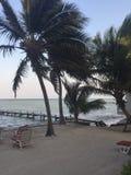 Spiaggia dell'ambra grigia Immagini Stock