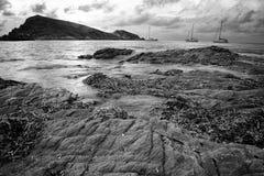 Spiaggia dell'erba Fotografie Stock