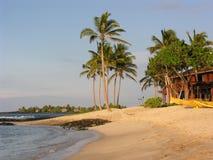 Spiaggia dell'Hawai Fotografie Stock Libere da Diritti