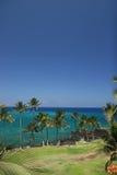 Spiaggia dell'Hawai Kona Immagini Stock Libere da Diritti