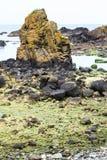 Spiaggia dell'Irlanda del Nord Fotografie Stock Libere da Diritti