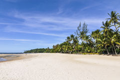 Spiaggia dell'isola di Boipeba, Morro de Sao Paulo, Salvador, Brasile Immagini Stock Libere da Diritti