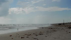 Spiaggia dell'isola di cappellano, il Texas stock footage
